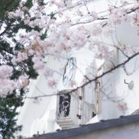 4月平成の結び